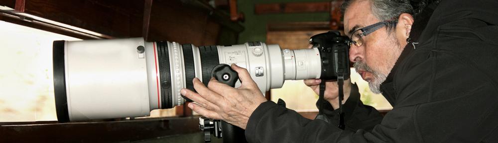 JOAN SAFONT  PHOTOGRAPHY